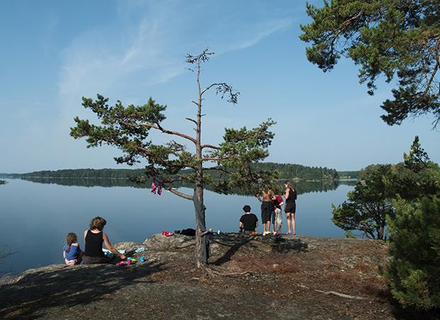 ulf_lundin-summertime-4537
