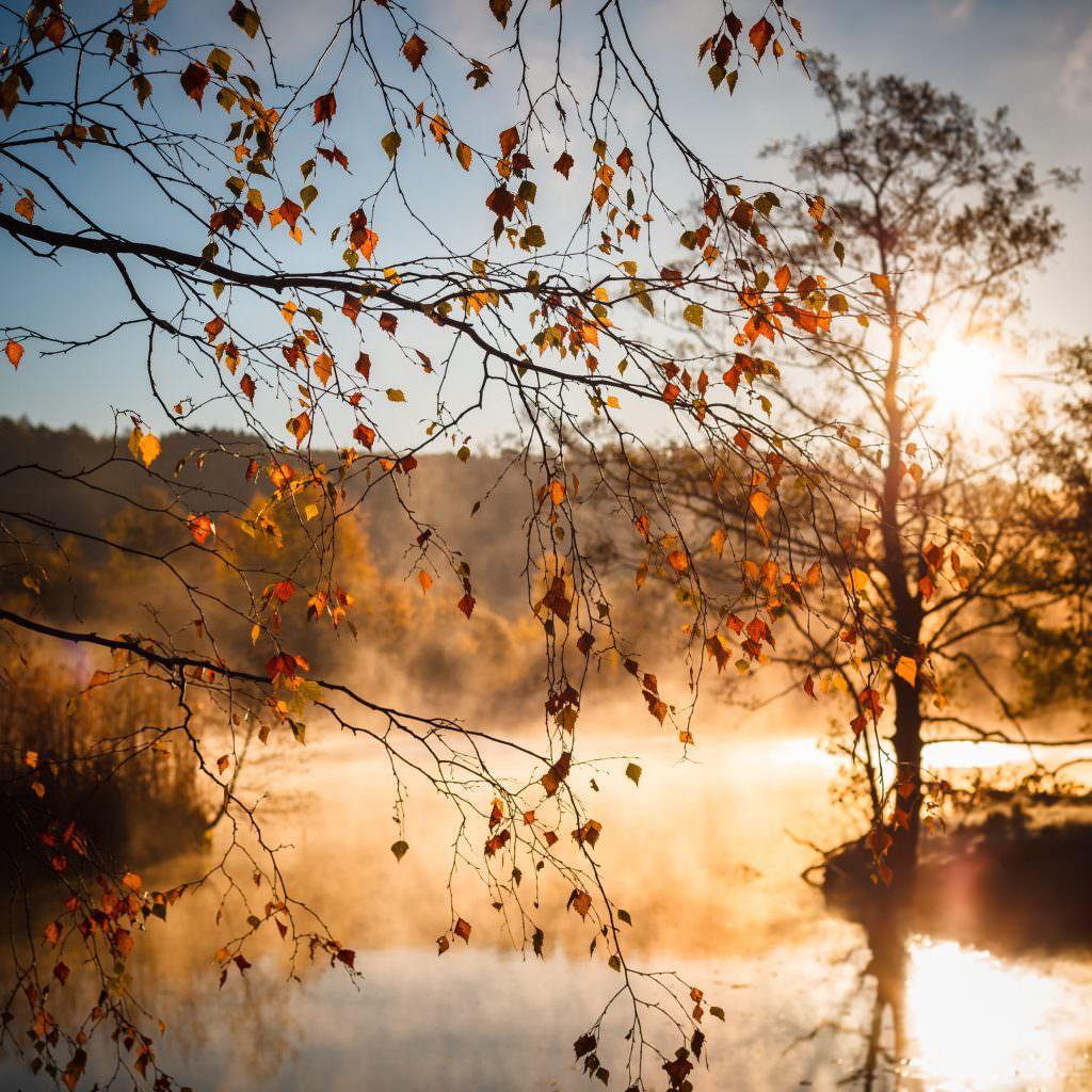 stefan_isaksson-fog_over_lake-4269